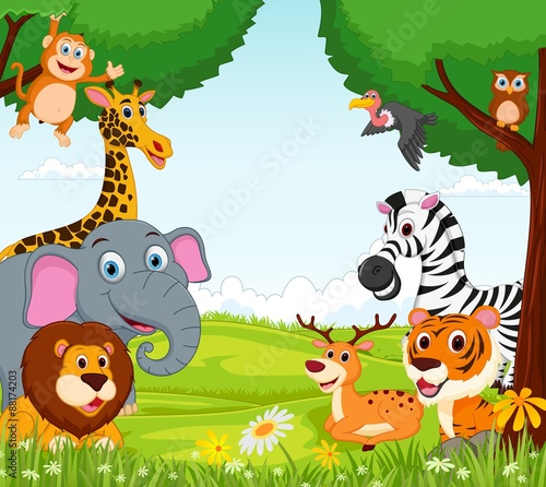 Animal cartoon in the jungle