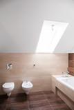 Hugh bathroom with the skylight poster