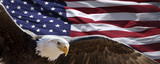 patriotic eagle taking wing in front of US flag - Fine Art prints