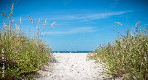 sunny beach with sand dunes and blue sky