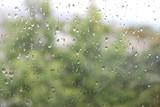 Rain drops on a window
