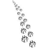 Footprints of a big cat5-vector  poster