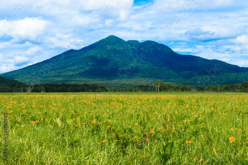 ニッコウキスゲと燧ヶ岳