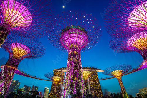 The Supertree at Gardens by the Bay Poster