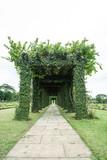Green archway in a garden. Htauk Kyant War Memorial Cemetery in Yangon, Myanmar.