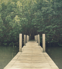 Long wood bridge in mangrove forest, Chanthaburi,Thailand