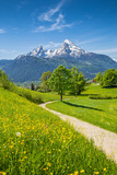 Fototapety Idyllic landscape in the Alps with meadows and flowers