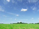 草原と秋の空