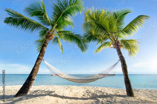 Fotografiet Urlaub am Palmenstrand in der Karibik mit Hängematte