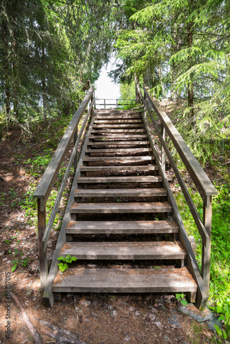 schody-w-srodku-natury