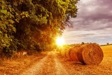 Countryside Summer Road - Fine Art prints