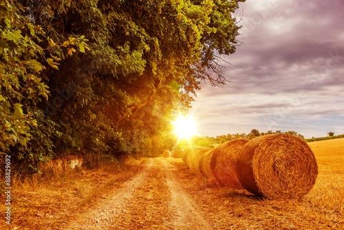 obraz lub plakat Countryside Summer Road