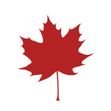 Red organic and natural maple leaf flat icon for apps and websites