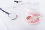 Fototapety 歯の模型と聴診器