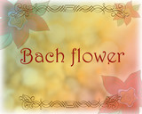 Bach flower design