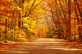 Fototapety Autumn scene with road