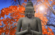 Old Budha - statue in Asia and Red maple