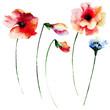 Set of summer watercolor flowers - 89076879