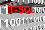 Transact-SQL is presented in the form of binary code