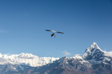 Ultra light plane flying over the Annapurna mountain range in the Himalayas near Pokhara, Nepal. The summit on the right is the Machapuchare (6993m), aka the fishtail mountain. poster