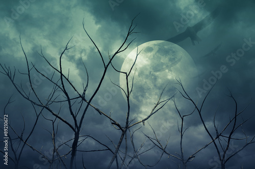 Spooky forest with full moon, dead trees, Halloween background