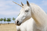 Unicorn - 89223265