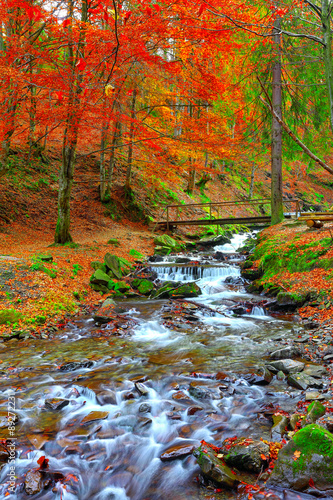 Fototapeta rapid mountain river in autumn