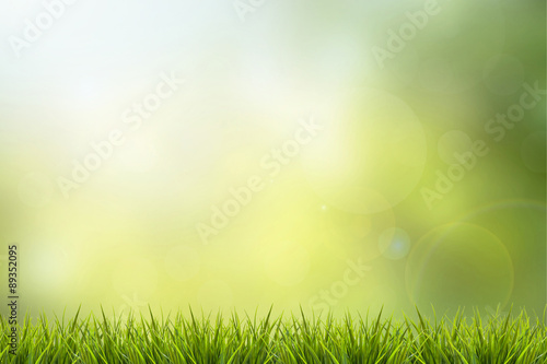 Póster Grass and green nature blurred background