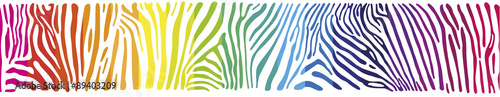 Obraz na Szkle Background with Zebra skin in the rainbow colors