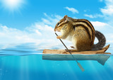 Funny animal, chipmunk floating at ocean, travel concept - 89514219