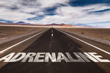 Adrenaline written on desert road poster