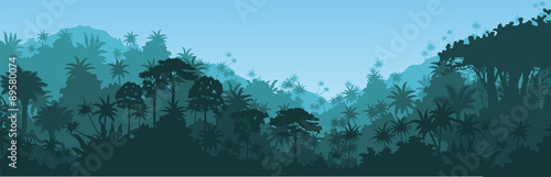 Fototapeta Vector horizontal tropical rainforest Jungle background