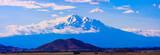 Mt. Shasta during Summer - 89594606