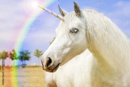 Unicorn Plakát
