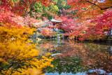 Autumn at daigoji temple