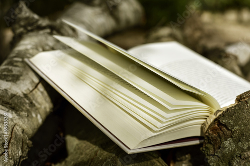 Poster book in a rustic scenery