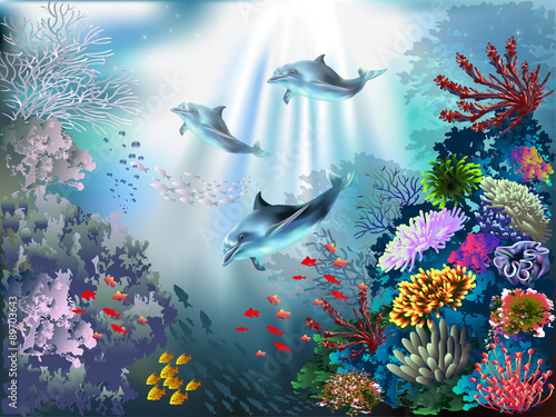 Fototapeta The underwater world with dolphins and plants