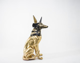 Symbol, sculpture of the Egyptian god Anubis, gold figure and bl
