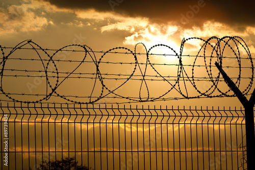 Poster Metal Fence with Barbed Wire