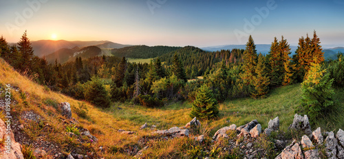 Poster Heuvel Spruce forest green mountain landscape panorama sunset, Slovakia