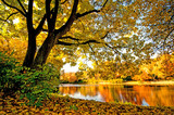 Fototapety Wonderful day in  autumn at a silent like :)