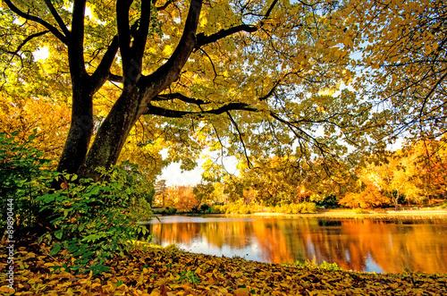 Zdjęcia na płótnie, fototapety na wymiar, obrazy na ścianę : Wonderful day in  autumn at a silent like :)