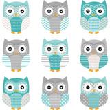 Aqua Grey Cute Owl Collections