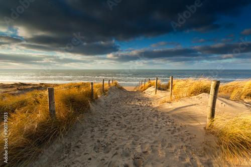 sand path to North sea beach in sunlight