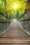 Fototapety Suspension bridge in the forest