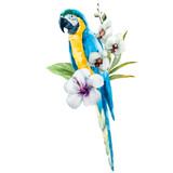Fototapety Watercolor parrot