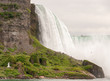 Niagara Falls. Wonderful scenario of water and vegetation