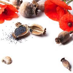 Poppy grain and flowers