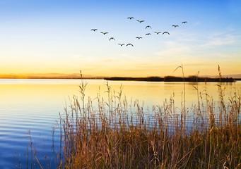 la orilla del lago © kesipun