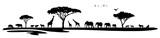 Silhouette Savanne Safari Afrika